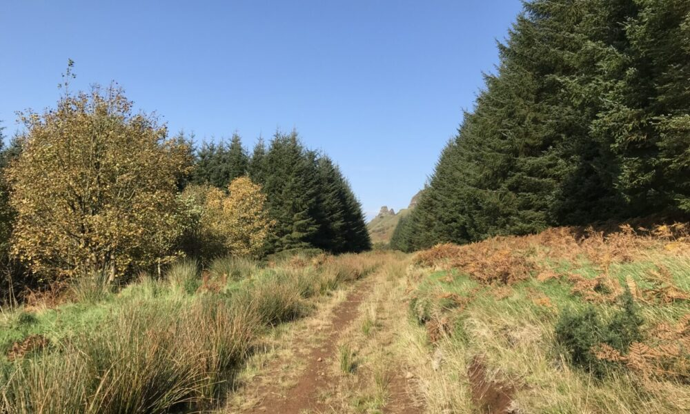 Aghanloo to Ballycarton Trail