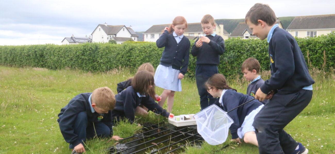 primary-school-children-pond-dipping