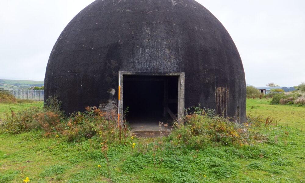Trainer Dome