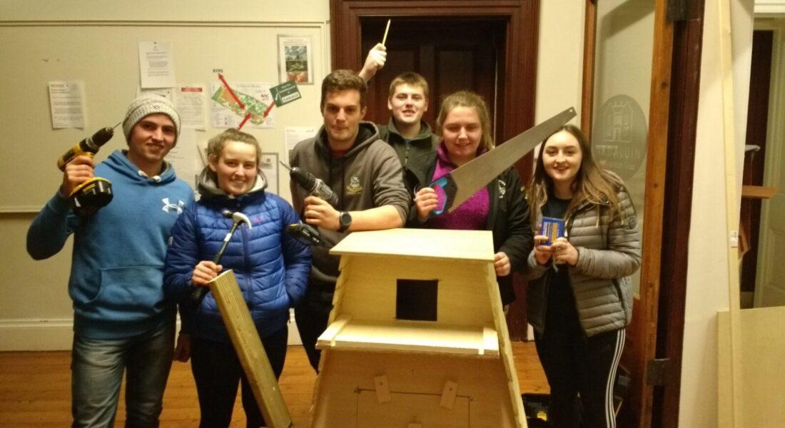 Owl box making